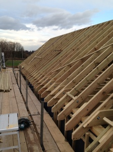 Roof build